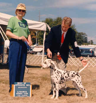 Best of Opposite Sex to Best of Breed from the classes